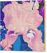 Iris  9 Wood Print