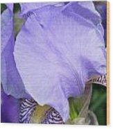 Iris Close Up 2 Wood Print