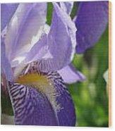 Iris Close Up 4 Wood Print