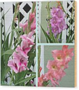 Iris Collage Wood Print