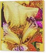 Iris - Customized Wood Print