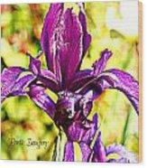 Iris Wood Print by Debbie Sikes