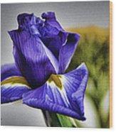 Iris Flower Macro Wood Print