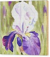 Iris Flower Purple Dance Wood Print
