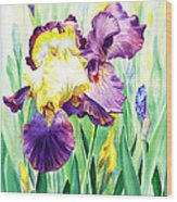 Iris Flowers Garden Wood Print