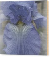 Iris Heart Wood Print by Kay Novy