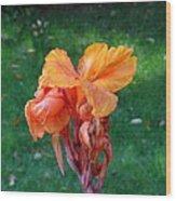 Iris In Autumn Wood Print