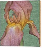 Iris in Watercolor Wood Print
