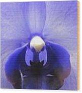 Iris Inside Wood Print