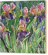 Iris Inspiration Wood Print by Zaira Dzhaubaeva