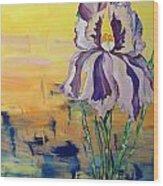 Iris Wood Print by Karen Carnow