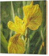 Iris Pseudacorus Yellow Flag Iris Wood Print