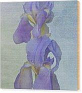 Iris Texture Wood Print