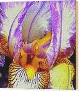 Iris Up Close And Personal Macro Wood Print