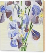 Irises Aglow Wood Print by Kip DeVore