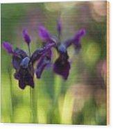 Irises Depth Wood Print