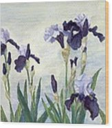 Irises Purple Flowers Painting Floral K. Joann Russell                                           Wood Print