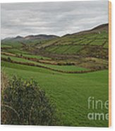 Irish Countryside Hdr Wood Print