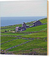 Irish Farm 1 Wood Print