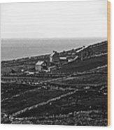 Irish Farm I - The Real Survivors Wood Print