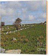 Irish Farms And Fields Wood Print