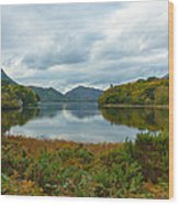 Irish Lake Wood Print by Pro Shutterblade
