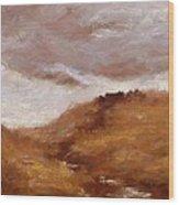 Irish Landscape I Wood Print by John Silver