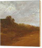 Irish Landscape IIi Wood Print by John Silver