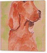 Irish Setter Wood Print
