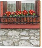 Irish Window Wood Print