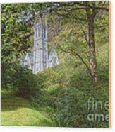 Irland - Wonderful Connemara Wood Print