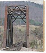 Iron Bridge Wood Print by Brenda Dorman