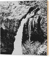 Iron Creek Falls Bw Wood Print