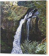 Iron Creek Falls Wood Print