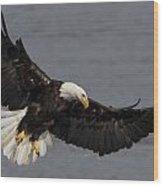 Iron Eagle  Wood Print by Glenn Lawrence