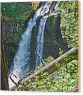 Iron Falls Wood Print