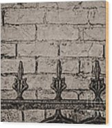 Iron Fence - New Orleans Wood Print
