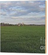 Great Friends Iron Horse Wheat Field And Silos Wood Print