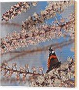 Irresistible Blossom Wood Print