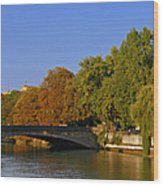 Isar River - Munich - Bavaria Wood Print by Christine Till