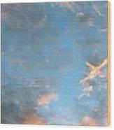 Isee An Airplane Wood Print