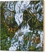 Isinglass Wood Print