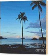 Isla Secas Wood Print