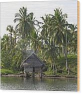Isla Tigre - Hut Over Water And Palm Trees Wood Print