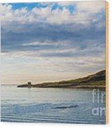 Island At Dublin Harbor Wood Print