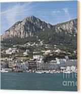 Island Capri Panoramic Sea View Wood Print by Kiril Stanchev