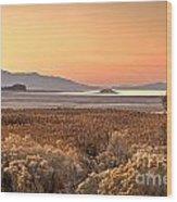 Island Daybreak Wood Print