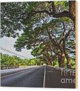 Island Drive  Wood Print