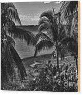 Island Girls Wood Print