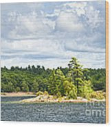 Island In Georgian Bay Wood Print